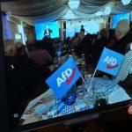 Das wird den Linken/Grünen nicht passen: Mitgliedschaft in AfD muss nicht automatisch zu Konsequenzen führen
