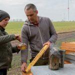 Die EU und natürlich Deutschland erlauben dieses Gift: Glyphosat verunreinigter Honig in Brandenburg muss entsorgt werden