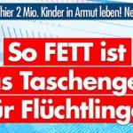 AfD: So FETT ist das Taschengeld für Flüchtlinge!