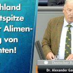 Gauland: Deutschland ist Weltspitze bei der Alimentierung von Migranten!