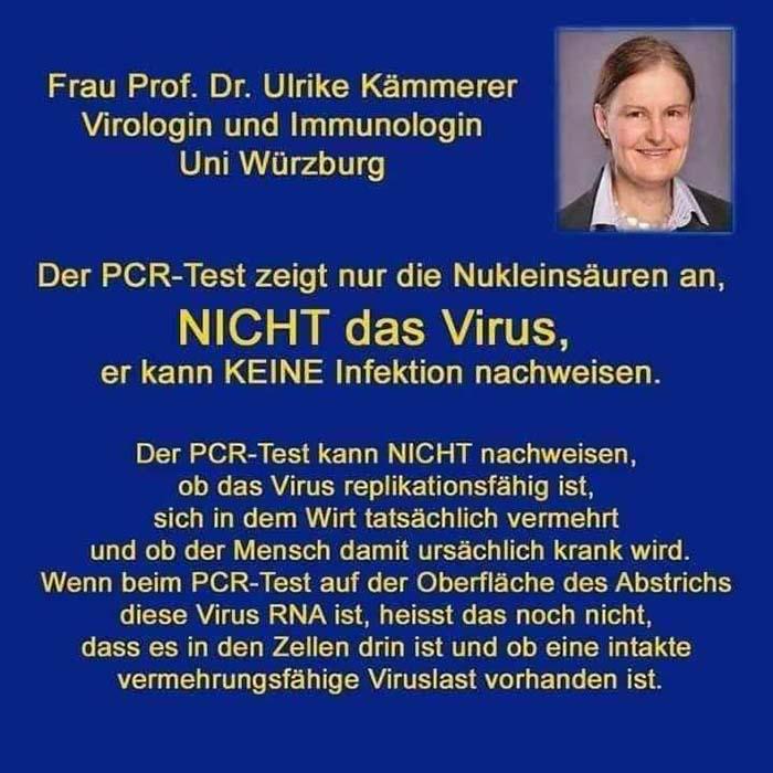 Prof Ulrike Kämmerer